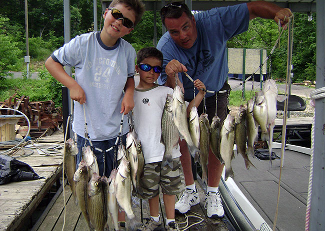 Jack 39 s guide service links page fishing lake of the for Crappie fishing lake of the ozarks